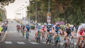 Fachowy kolarstwa peloton podczas nocy rasy obraz stock