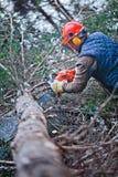 Fachowy Lumberjack Fotografia Royalty Free