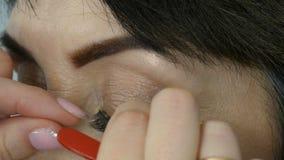 Fachowy makeup artysta wtyka sztuczne rzęsy na niebieskich oczach dorosła w średnim wieku kobieta zamknięta w górę widoku zbiory wideo