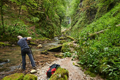 Fachowy natura fotograf Fotografia Royalty Free