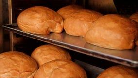 Fachowy piekarz, bierze chlebów bochenki od piekarnika zbiory