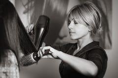 Fachowy włosiany stylista z hairdryer i grępla pracuje przy klienta ` s włosy zdjęcie royalty free
