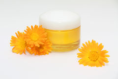 Facial cream. With calendula flowers on white Stock Image