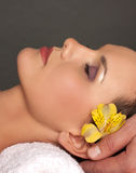 Facial massage and heads royalty free stock photos