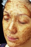 Facial Treatment. Mud facial treatment on Chinese young lady Royalty Free Stock Images