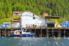 Facilidade de processamento dos peixes de Alaska Hoonah Foto de Stock