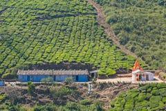 Facilità per i lavoratori su una proprietà indiana del tè Fotografia Stock