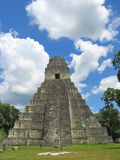 Facing to the main building. Of old maya ruins in the jungle - Tikal - Guatemala Royalty Free Stock Images