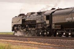 Facklig Stillahavs- ångalokomotiv 844 Fotografering för Bildbyråer