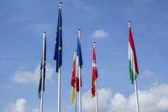 fackliga europeiska flaggor Royaltyfri Fotografi