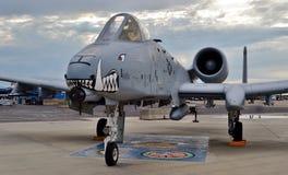 Facocero dell'aeronautica A-10/aereo da caccia di colpo di fulmine II Immagine Stock Libera da Diritti
