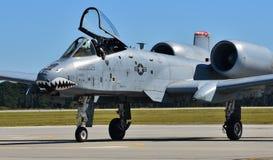 Facocero dell'aeronautica A-10/colpo di fulmine II Fotografie Stock Libere da Diritti