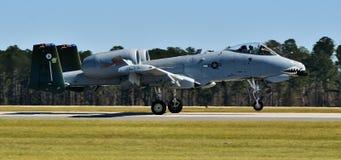 Facocero dell'aeronautica A-10/colpo di fulmine II Fotografia Stock Libera da Diritti