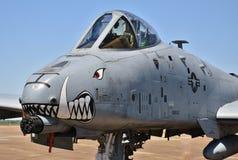Facocero dell'aeronautica A-10/colpo di fulmine II Immagine Stock