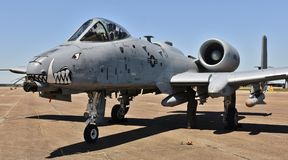 Facoquero de la fuerza aérea A-10/rayo II Fotografía de archivo libre de regalías