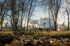 Factory complex low photographing thru park in the autumn royalty free stock image