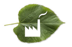 Factory cutted in a green leaf Royalty Free Stock Image