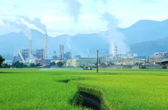 Factory in the middle of a green rice field emitting smoke on a cloudy day Stock Photography