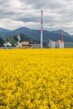 Factory Mondi in town Ruzomberok, Slovakia Royalty Free Stock Photos