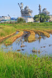 A factory near by a rice field Royalty Free Stock Photos