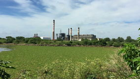 Factory pollution in the middle of a ecologic reserve stock video footage