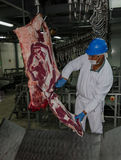 The factory for the production of food from natural Ingredients. Butcher shop. Butchering beef. Meat processing plant in a meat factory stock photography