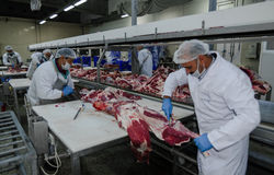 The factory for the production of food from natural Ingredients. Butcher shop. Butchering beef. Royalty Free Stock Image