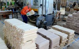Factory for production of furniture. Wood plank finger jointing process on factory manufacture Stock Photo