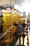 A factory for the production of sunflower oil. Sunflower oil. Line for the production and bottling of refined oil from sunflower seeds. Conveyor of food royalty free stock photo