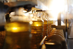 A factory for the production of sunflower oil. Sunflower oil. Line for the production and bottling of refined oil from sunflower seeds. Conveyor of food stock images