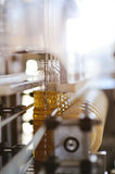 A factory for the production of sunflower oil. Sunflower oil. Line for the production and bottling of refined oil from sunflower seeds. Conveyor of food royalty free stock photography