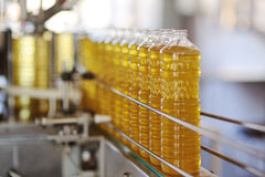 A factory for the production of sunflower oil. Sunflower oil. Line for the production and bottling of refined oil from sunflower seeds. Conveyor of food stock photos
