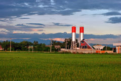 Factory in the rice field. A big factory in the rice field Stock Image