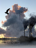 Factory Smoke Vs Birds Escape Royalty Free Stock Photos