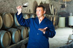 Factory sommelier checking quality of wine Royalty Free Stock Image