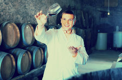 Factory sommelier checking quality of wine Stock Photography