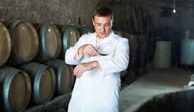 Factory sommelier checking quality of wine Royalty Free Stock Photography