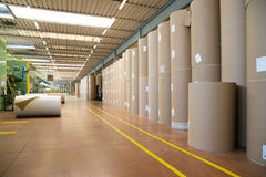 Factory to produce corrugated cardboard. Paper are delivered to corrugators, wrapped around large reels and are processed into sheets of corrugated Stock Photo