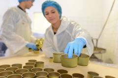 Factory worker preparing tin cans Royalty Free Stock Image