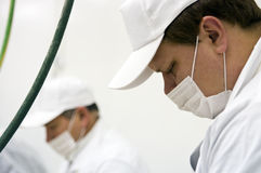 Factory workers. Food processing factory workers portrait Royalty Free Stock Photography