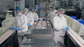 Factory workers pack products into plastic containers in a facility. stock video