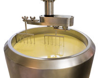 Factura de queijo Imagem de Stock