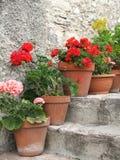 Factures de grues sur les escaliers historiques Photos stock