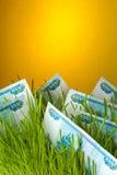 Factures de rouble dans l'herbe verte Photographie stock