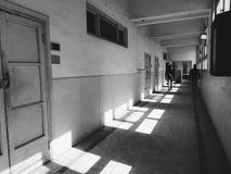 Faculdade da agricultura, Alexandria, Egito fotografia de stock