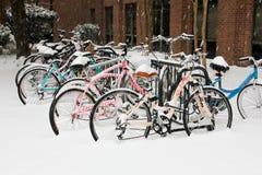 Faculdade de bicicletas de Charleston Student Imagem de Stock
