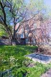 Faculdade de Brown em Monroe Hill em UVA Foto de Stock