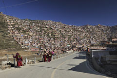 Faculdade do budismo e das monges Foto de Stock