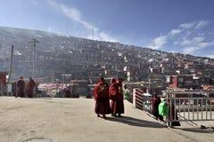 Faculdade do budismo e das monges Imagem de Stock