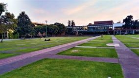 Faculdade UNAM da arquitetura imagens de stock